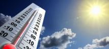 Exposition aux fortes chaleurs et à la canicule: Obligations de l'employeur et rôle du CHSCT  18/07/19