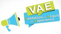 La Validation des Acquis de l'Expérience (VAE)  15/04/21